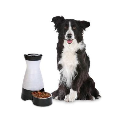 PetSafe Healthy Pet Food Station, Medium