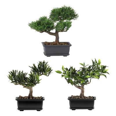 nearly natural 3-pc. Silk Bonsai Tree Set, Multicolor