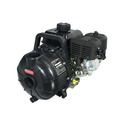 "4 Hp 2"" Pacer Pump W/ B&s Engine Sprayers, Pumps, Parts, ..."