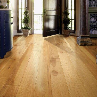 Shaw Belvoir Hickory York 916 In Thick X 7 12 In Wide X Varying