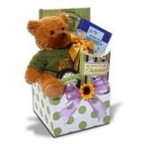 Alder Creek Feel Better Soon Get Well Gift Box with Bear Plush, Multicolor | White Wine Red