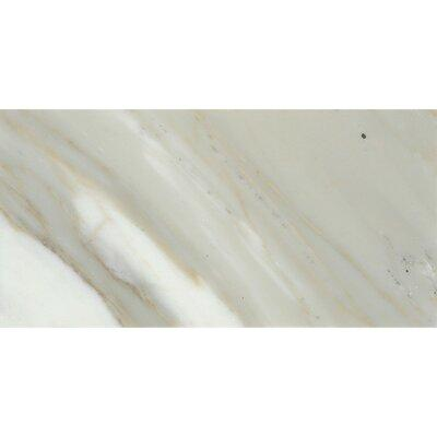 """EMS Marble 4"""" x 8"""" Tile in Calacata Oro Polished M05CALAO..."""