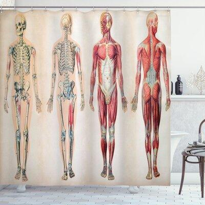 Ambesonne Human Anatomy Vintage Chart of Body Front Back ...