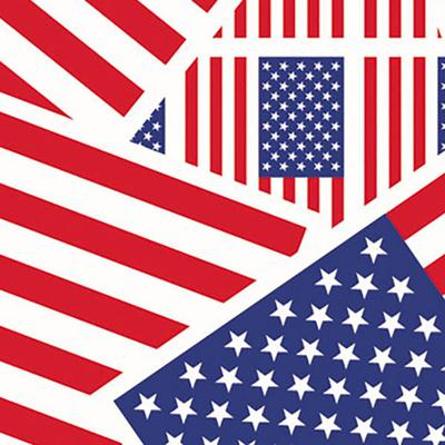 "Duck Tape 283046 1 7/8"" x 10 Yards Colored U.S.A. Flag Du..."