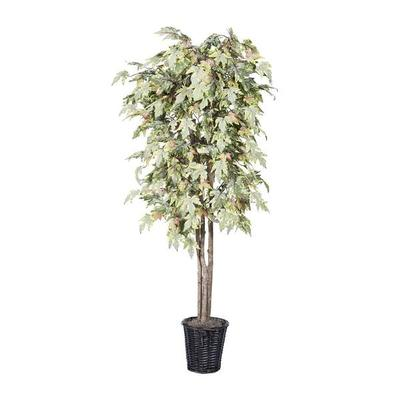 Vickerman 264829 - 6' Frosted Maple Deluxe (TDX1760) Mapl...