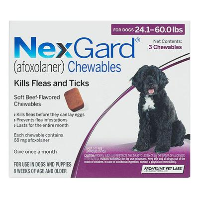 Nexgard For Dogs 10.1 - 25 Kg (Purple) 6 Chews