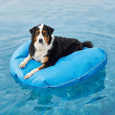"""Dog Pool Float and Lounger - Pool Blue, Large: 47"""" dia. - Frontgate"""