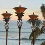 Set of 2 Pineapple Torches - Fro...