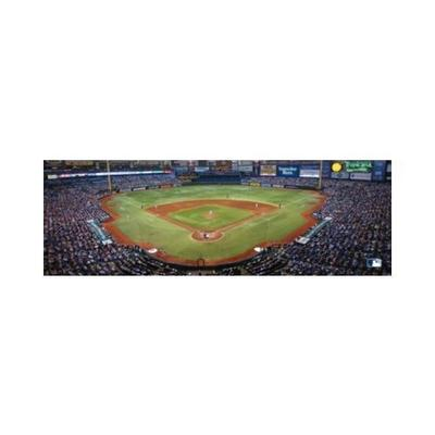 MasterPieces Tampa Bay Rays - 1000pc Panoramic Jigsaw Puzzle