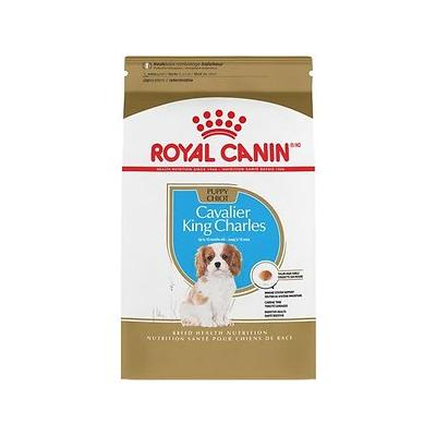 Royal Canin Cavalier King Charle...