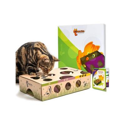 Cat Amazing Best Cat Toy Ever! Interactive Treat Maze & Puzzle Toy