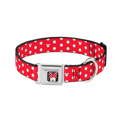 Buckle-Down Minnie Mouse Polka Dot Seatbelt Buckle Dog Collar, Medium; Your active and animated hound will walk tall in the Minnie Mouse Polka-Dot dog collar from Buckle-Down. This high-density polyester collar sports Minnie\'s famous red-and-white...